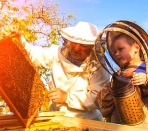 Zážitkový kurz včelaření